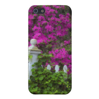 Azaleas in the spring at Historic Isle of Hope iPhone 5/5S Covers