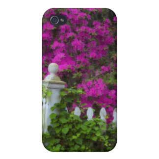 Azaleas in the spring at Historic Isle of Hope iPhone 4 Case
