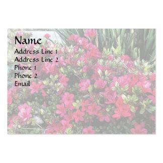Azaleas in the Sun Business Card Templates