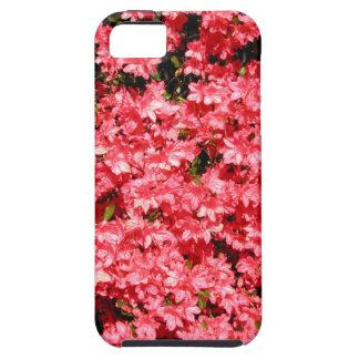 Azaleas. Lots of Pretty Pink Flowers. iPhone SE/5/5s Case