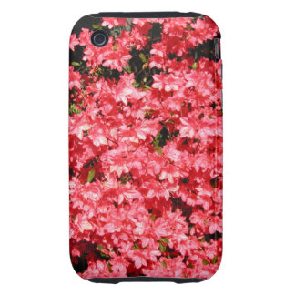 Azaleas. Lots of Pretty Pink Flowers. Tough iPhone 3 Covers