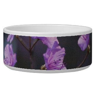 Azaleas púrpuras de la esperanza tazon para perro