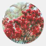 Azaleas rojas y significado pegatina redonda