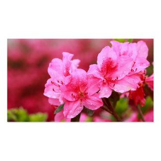 Azaleas rosadas - calendario del bolsillo tarjetas de visita