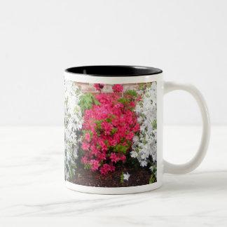 Azaleas wrap around Mug