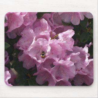 Azaleas y abeja rosadas, flores del jardín del rod tapete de raton