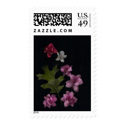 Azaleas y sello de Oakleaf
