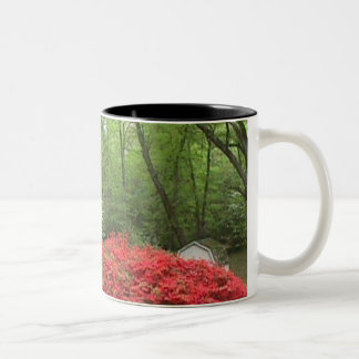 Azaleas y taza de los Dogwoods