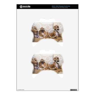 Azawakh Puppies Xbox 360 Controller Skins