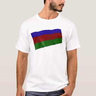 Azerbaijan Playera