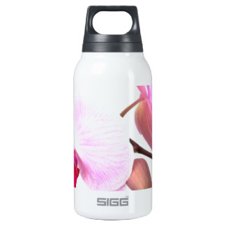 Aziza Orchid Blossoms Insulated Water Bottle