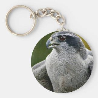 Azor septentrional llavero redondo tipo pin