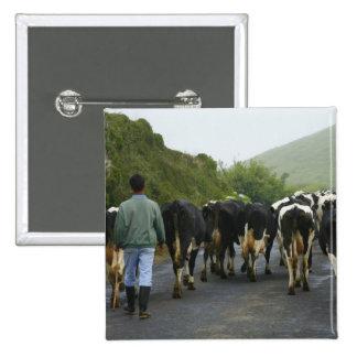 Azorean farmer pinback button