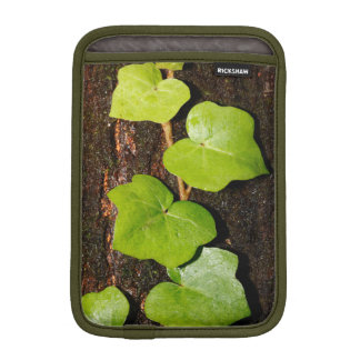 Azores endemic hedera sleeve for iPad mini