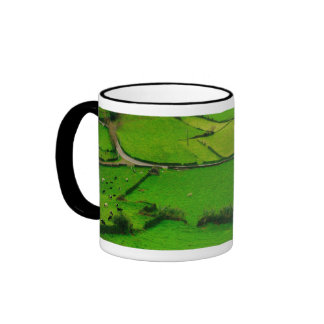 Azores pastures ringer mug