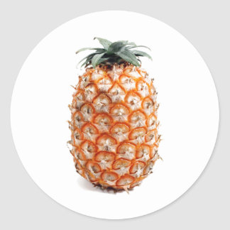 Azores Pineapple Classic Round Sticker