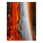 Azores thermal water postcard