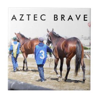 Aztec Brave Tile