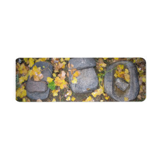 aztec grinding stones with yellow fall leaves label