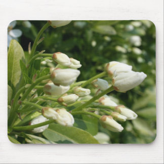 Aztec Pearl - Floral Photography Mouse Pad