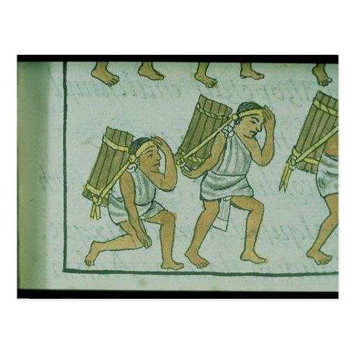 Aztec porters, from the 'Florentine Codex' Postcard