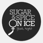 Azúcar y especia en el hielo etiquetas redondas