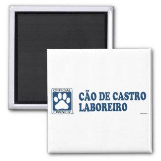 Azul de Cãƒo De Castro Laboreiro Imán Cuadrado