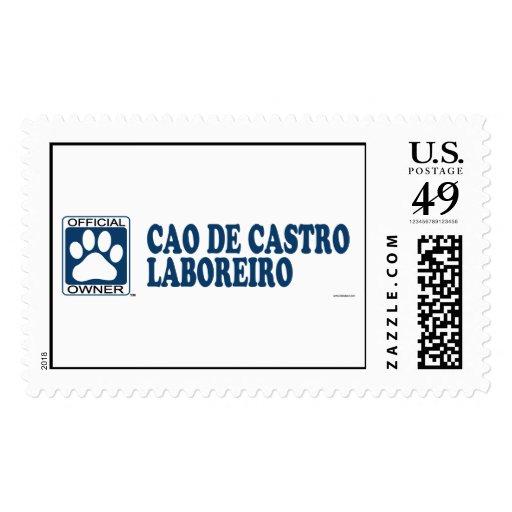 Azul de Cao De Castro Laboreiro Envio