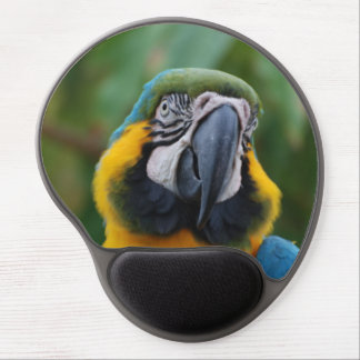 Azul de Cheeked y Macaw rechonchos del oro Alfombrillas Con Gel