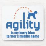 Azul de Kerry Terrier Alfombrillas De Ratones