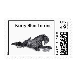 Azul de Kerry Terrier con el cuenco Estampilla