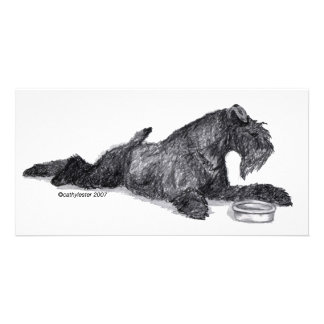Azul de Kerry Terrier con el cuenco Tarjetas Fotográficas Personalizadas