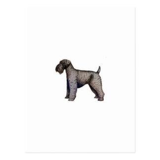 Azul de Kerry Terrier Postal