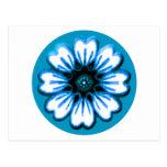 Azul de la margarita los regalos de Zazzle del Postal