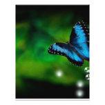 azul de la mariposa tarjetas informativas