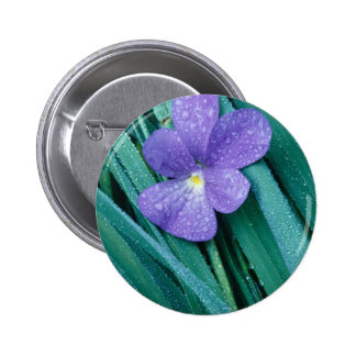 Azul de las violetas R Pin Redondo De 2 Pulgadas