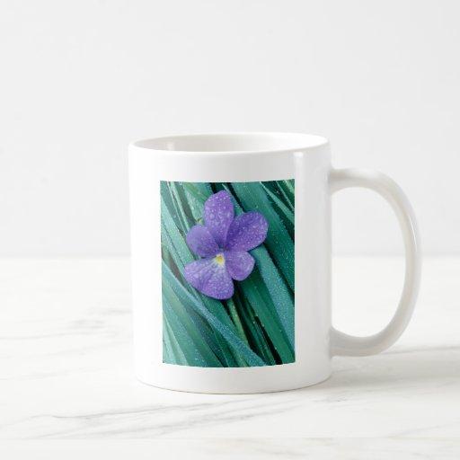 Azul de las violetas R Taza Básica Blanca