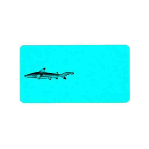 Azul de neón del trullo del ejemplo del tiburón de etiquetas de dirección