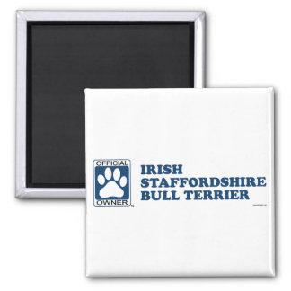Azul de Staffordshire bull terrier del irlandés Imán Cuadrado