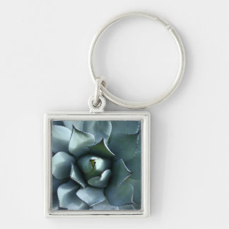 azul del agavo llavero cuadrado plateado