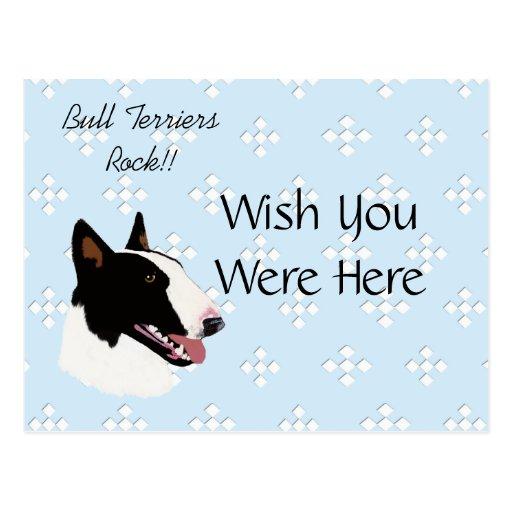 Azul del ~ de bull terrier con el diseño blanco de tarjetas postales