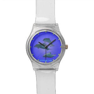 Azul del delfín del reloj de May28th por el highsa