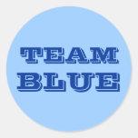 Azul del equipo pegatinas redondas