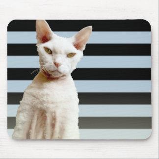Azul del gato de Rex/raya negra Mousepad Tapetes De Ratón