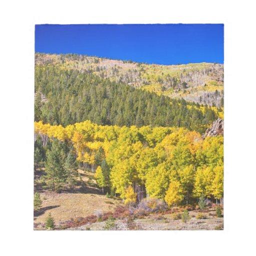 Azul del oro de Colorado Libreta Para Notas