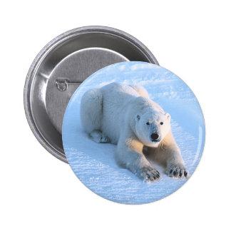 Azul del oso polar pin redondo de 2 pulgadas