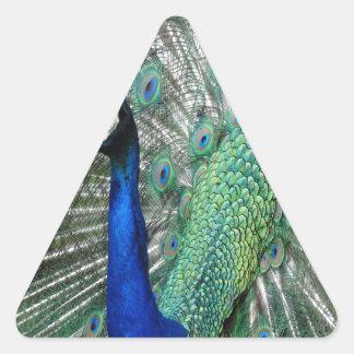 Azul del tipo pegatina triangular
