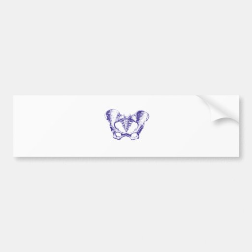 Azul femenino de la pelvis pegatina de parachoque