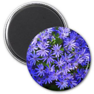 Azul Margarita-como las flores Imán Redondo 5 Cm