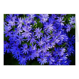 Azul Margarita-como las flores Tarjeta De Felicitación